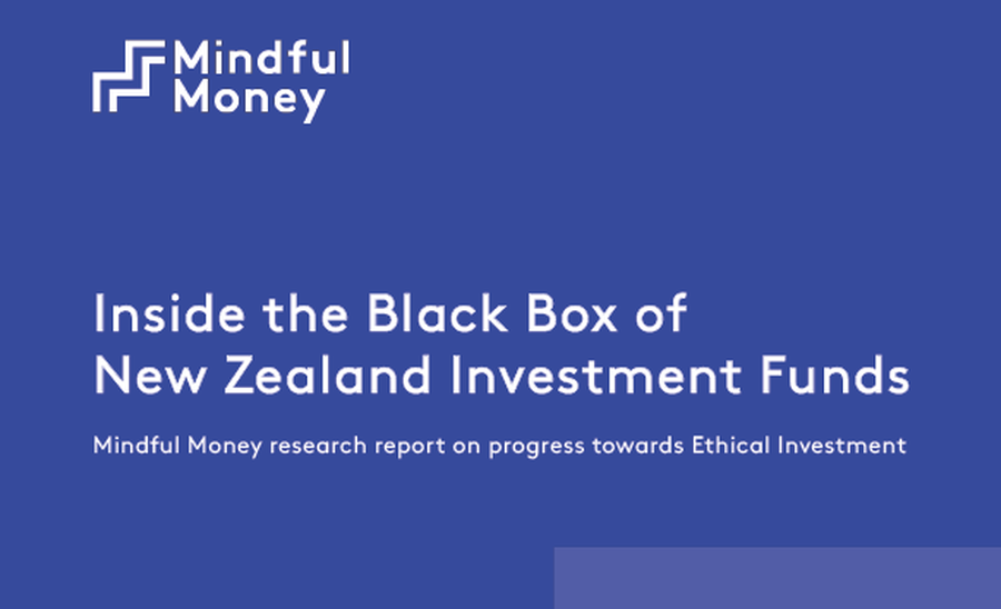 Ethical investment funds nzs tkc global investments inc